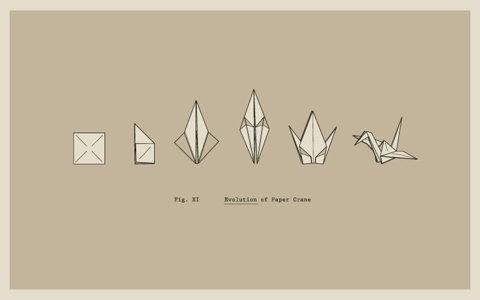 FFFFOUND! | All sizes | Evolution of Paper Crane | Flickr - Photo Sharing! #illustration #crane #paper