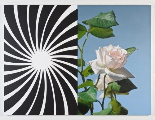 Chimes&Rhymes | innovative design and new techniques in visual artistry #sun #white #rose #lineart #black #and