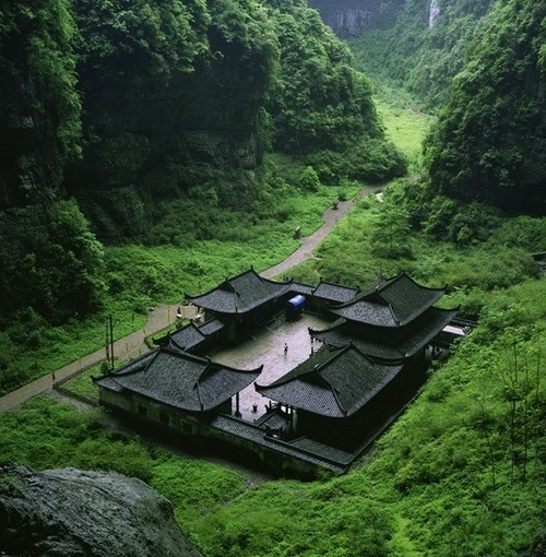 tumblr_lfodhc1uan1qzqtcwo1_500.jpg 500×510 pixels #nature #atmosphere #green