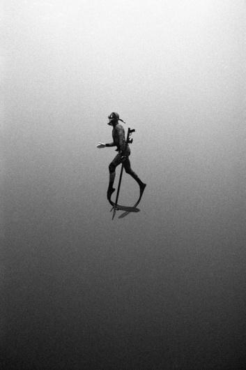 Google Reader (144) #white #diver #free #dive #black #zimmerman #kanoa