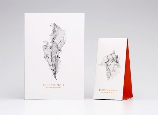 Graphic-ExchanGE - a selection of graphic projects #skeleton #identity #leaf