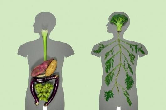 KyleBean.co.uk - Portfolio #sculpture #body #food