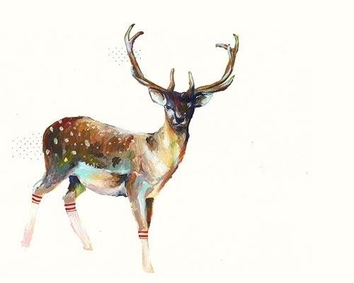 John James: HAPPY CANADA DAY! #tubesocks #deer