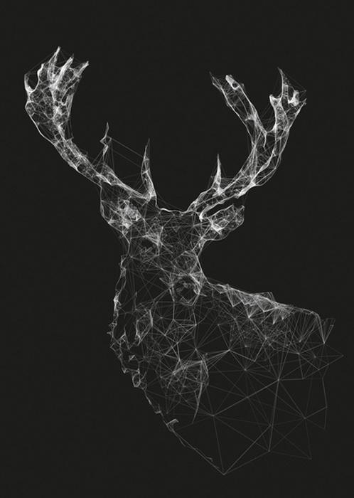 Jordan Rogers #buck #wildlife #art