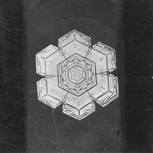 Snowflake Study | Flickr - Photo Sharing! #snowflake #photography #1890 #study