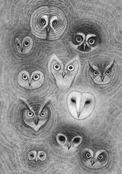 35_owl wall #illustration #pencil #owls #drawing