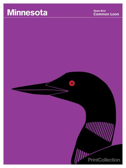 Minnesota #loon #red #common #black #purple