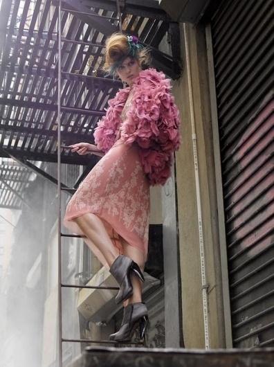 Shourouk***: Elisa Palomino #pink #palomino #dress #elisa #flowers