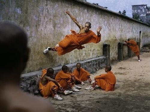 gosta / . #movement #arts #orange #martial