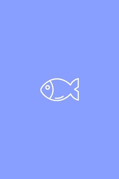#photography#fish#editorial#PicsArt