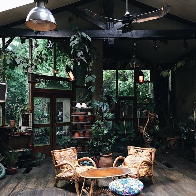 #interior #vegetation #plants