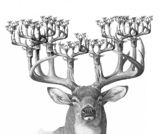 Фрактальный олень #deer #drawing #fractals