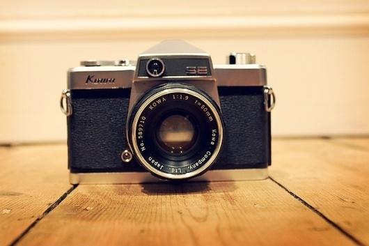 websitesarelovely: Spring light is golden #camera #photography #retro #flickr