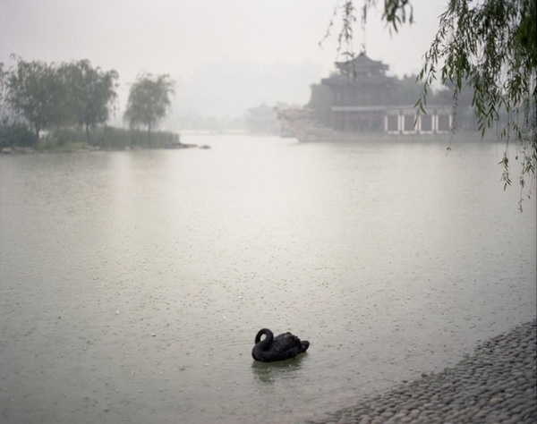 Chinese Sentiment by Shen Wei #inspiration #photography #art #fine