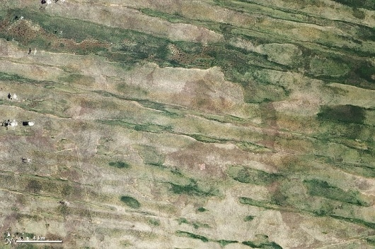 Linear Dunes of the Caprivi Strip : Image of the Day #caprivi #satellite #nasa #land #imager #strip #advanced #photography #namibia