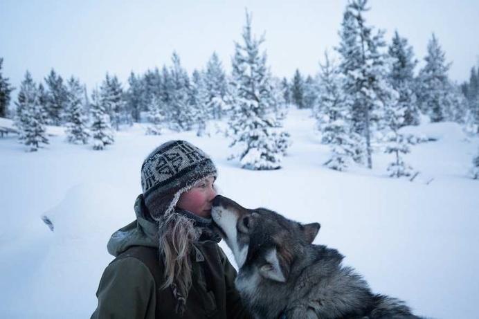 Arctic Love by Brice Portolano