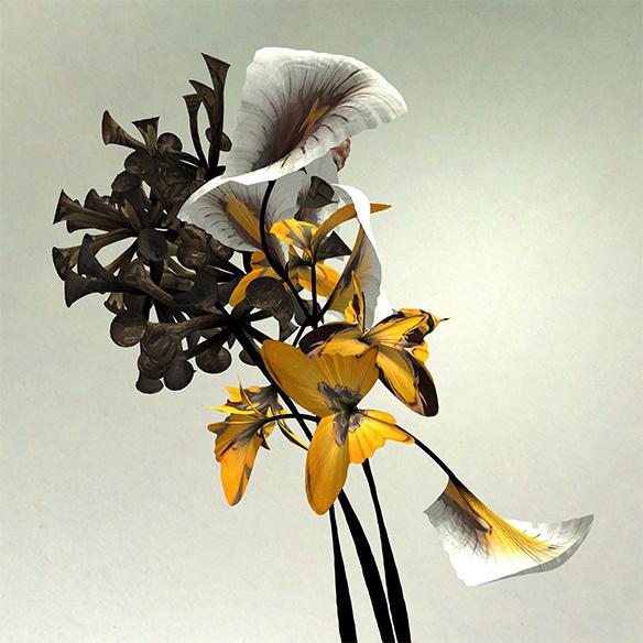 Daniel Brown's #flower