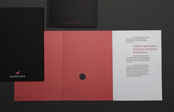 Champions Brand Identity on Behance #color #colour