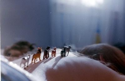 Sarah Margeurite #horses #toys #photography