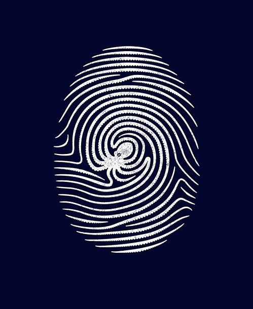 Tumblr #illustration #clever #octopus #fingerprint