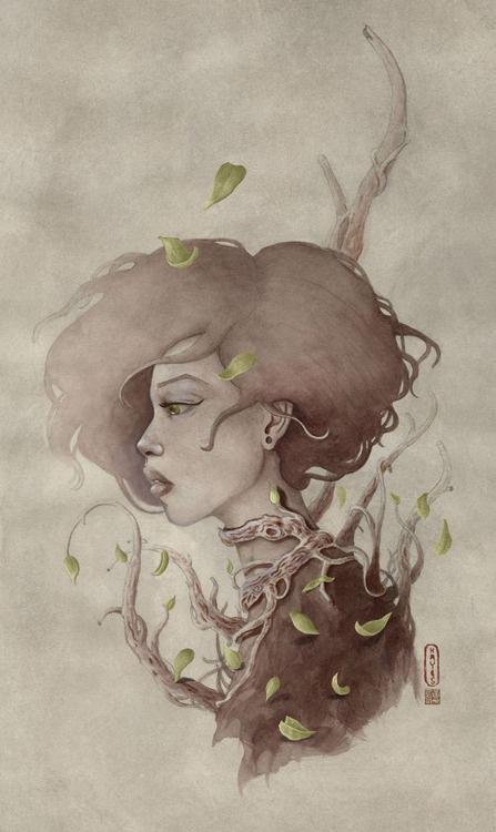 Life and Nature travishayesillustration.com #illustration #design #graphic #art