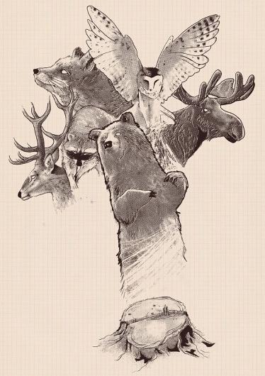 Tobe Fonseca #illustration #fonseca #tobias
