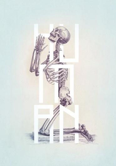 Bone - Anatomy Illustrated on the Behance Network #design #graphic #anatomy #human #publishing #iluustration #typography