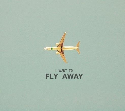 Moi, je fais ce que je veux #flying #photography #plane #typography