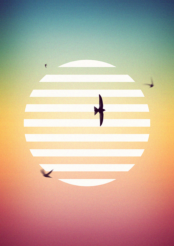 Fabrice Vrigny for Musk decoration #birds #minimal #poster