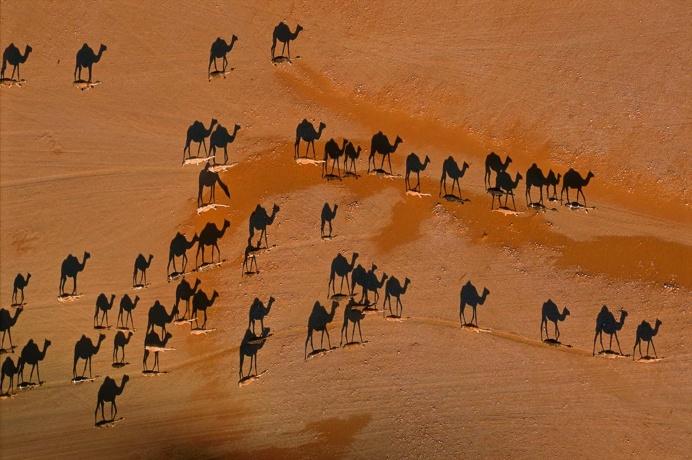 Desert Art by George Steinmetz