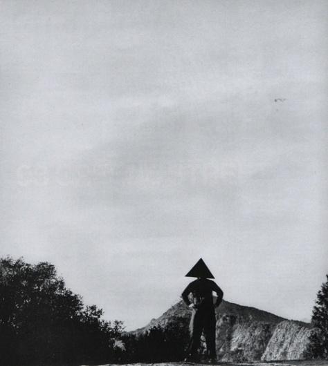 ROLU, rosenlof/lucas, ro/lu (a modern landscape design studio's blog in minneapolis) #william #cone #shapes #nature #series #art #wegman #basic