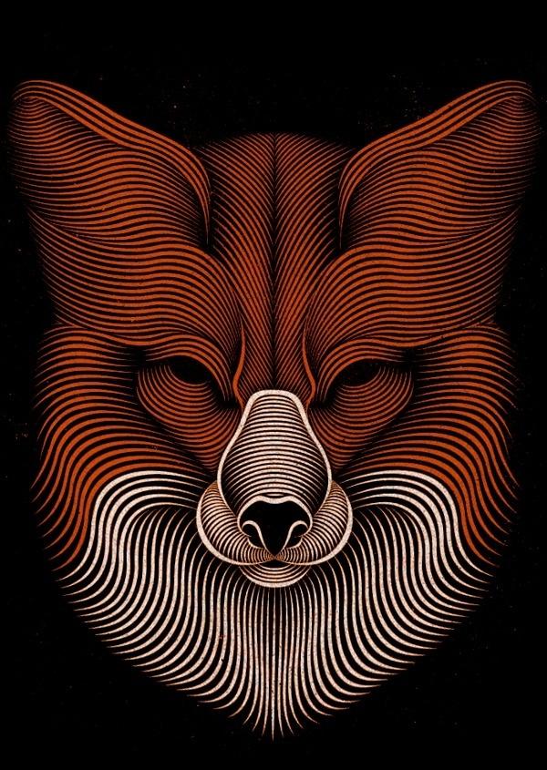 Fox on Behance #fox