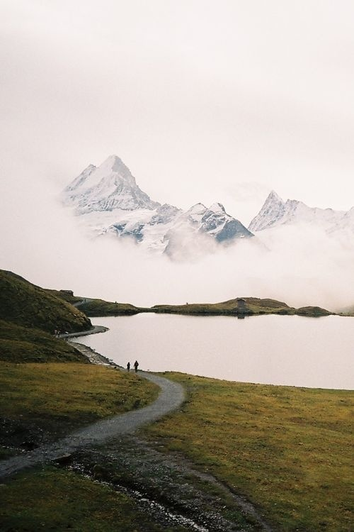 #photography#picture#photo#mountains#fog#nature