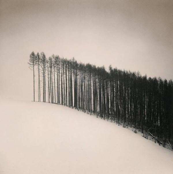 Michael Kenna, Forest Edge, Hokuto, Hokkaido, Japan, 2004via melisaki #white #black #and #forest #trees #winter