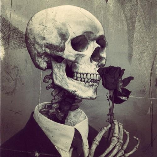 Skull #rose #skull