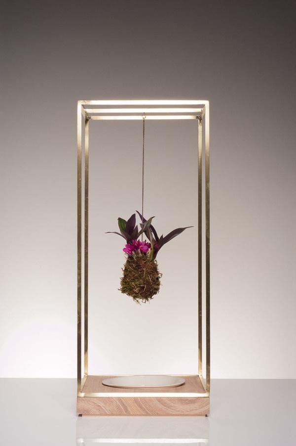 Plant Bondage by Light + Ladder #modern #design #minimalism #minimal #leibal #minimalist