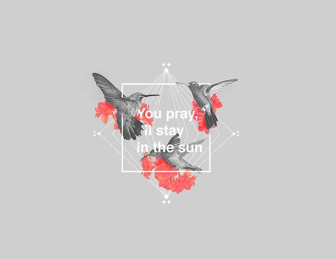 Y P I S I S #sun #pray #hummingbird #quote #design #graphic #bird #illustration #square #typography