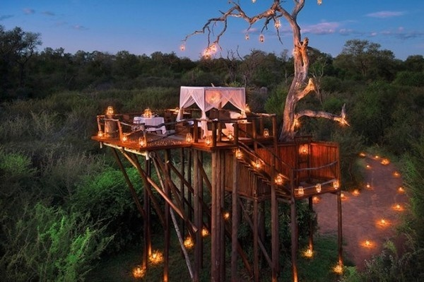 Sleep Under the Stars at South African Resort – Fubiz™ #africa #architecture #house #tree