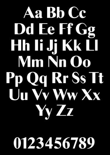 Times Ten Sans — Vance Wellenstein #times #sans #design #stressed #type
