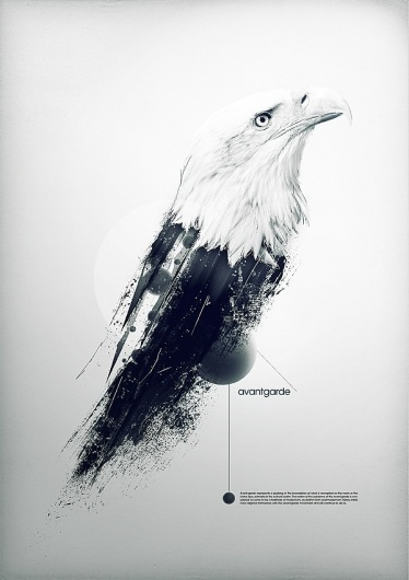 avantgarde on the Behance Network #poster #art #bird