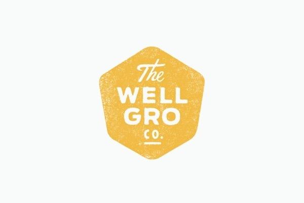 The Wellgro Co. logo by Murray Karl Hébert #logo #wellgro #hexagonal