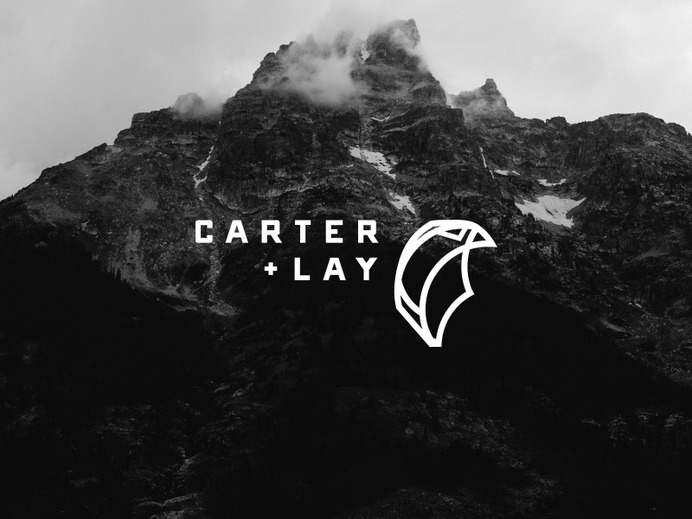 Carter + Lay - Falcon Logo falcon bird identity branding art direction design logo consultant firm hawk ___ Josh Kulchar