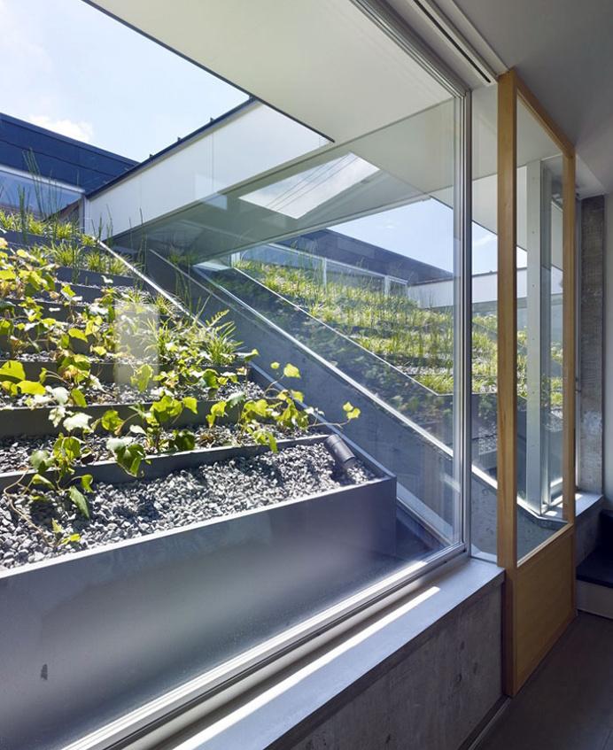 Roof Garden - #architecture, #home, #decor, #garden