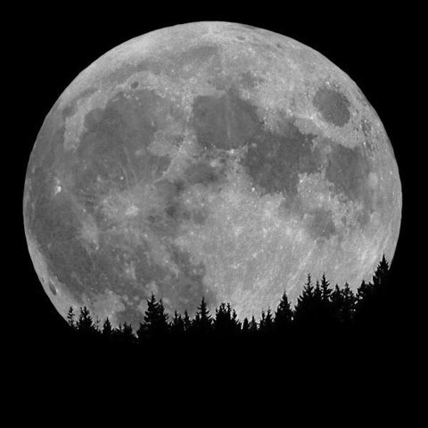 FFFFOUND! | DETHJUNKIE* #moon