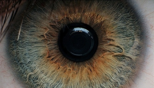 tumblr_la327ru9yK1qb899go1_500.jpg (500×288) #eye #photography #iris #eyeball