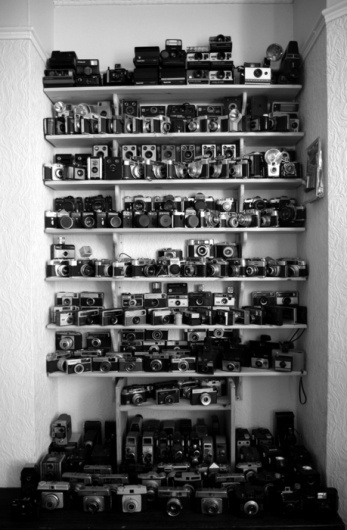 i'm not wordy #camera #photography #photo #cameras