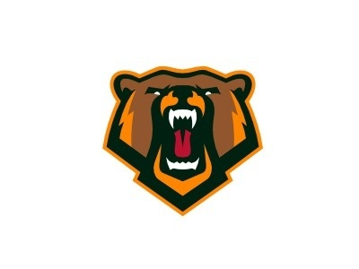 Dribbble - Bear by CJ Zilligen