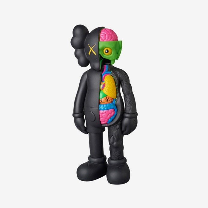 Kaws: Companion Flayed Open Dissected | Sgustok Design