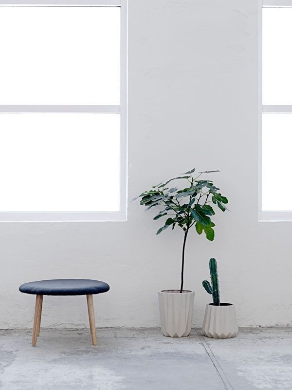 plants via plant flowerpot in a. Black Bedroom Furniture Sets. Home Design Ideas