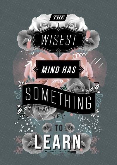 Imaginary Foundation #quote #wise #mind #learn #typography